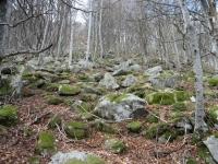 030_-les-salines-montalba