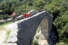 Santa Bàrbara de Pruneres 04/05/2024