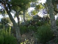 Travessada Gavarres 2011-17