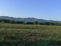 Travessada Gavarres 2011-8