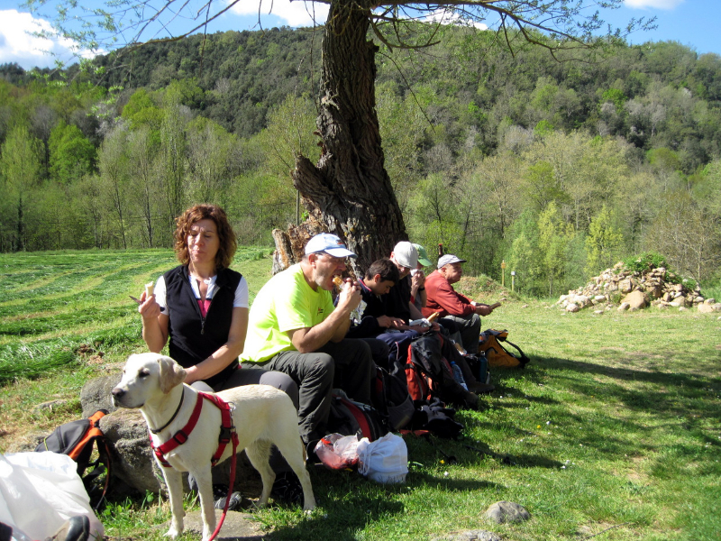 036_via-romana-vall-del-bac