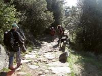 006_via-romana-vall-del-bac